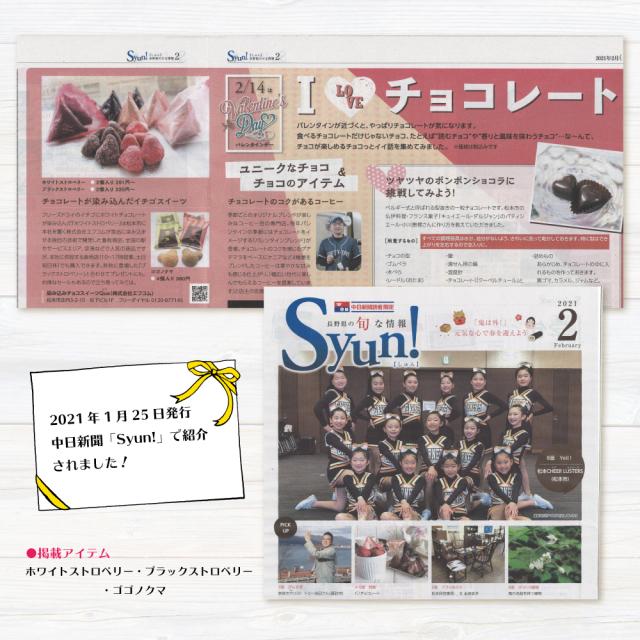 中日新聞「Syun!」