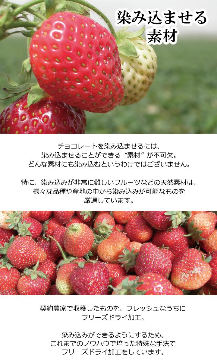 規格をクリアした新鮮な苺をフリーズドライ加工しています。