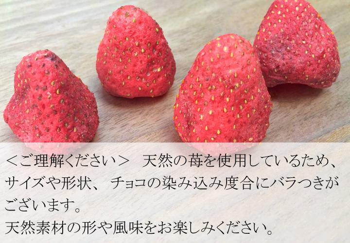 天然の苺を使用しているため、 サイズや形状、チョコの染み込み度合にバラつきがございます。 天然素材の形や風味をお楽しみください。